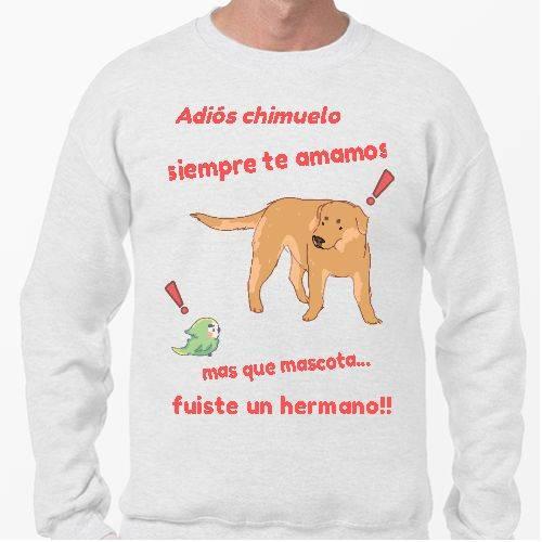 https://media2.positivos.com/104437-thickbox/adios-chimuelo-meme.jpg