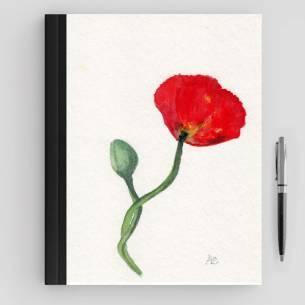 amapola solitaria roja