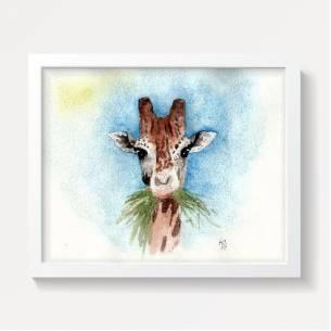 jirafa comiendo hierba
