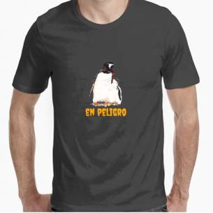 Pingüinos papúa, especie en peligro