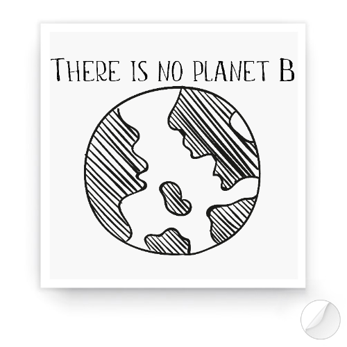 https://media2.positivos.com/166117-thickbox/pegatinas-there-is-not-planet-b.jpg