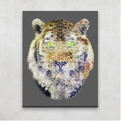 https://media2.positivos.com/80415-thickbox/biomec-poly-tiger-canvas.jpg
